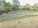 0 Lakeland Acres Road - Photo 7