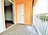 5000 Culbreath Key Way - Photo 65