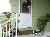 904 Cassandra Lane - Photo 3