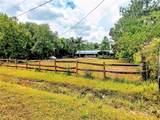2036 Ridge Meadow Drive - Photo 2