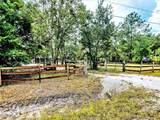 2036 Ridge Meadow Drive - Photo 3