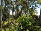 Strombus Road - Photo 3