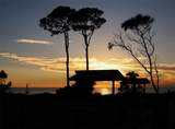 141 Bella Vista Terrace - Photo 40