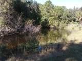 595 Pinto Trail - Photo 28