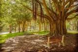 756 White Pine Tree Road - Photo 60