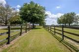 12570 Jacksonville Road - Photo 18