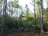 10460 Bromeliad Road - Photo 2
