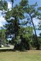 3400 Pine Needle Trail - Photo 5