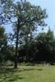 3400 Pine Needle Trail - Photo 7