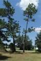 3400 Pine Needle Trail - Photo 8
