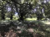 Spicewood Way - Photo 9
