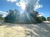 Butternut Drive - Photo 2