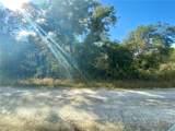 Butternut Drive - Photo 4