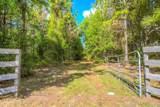 5844 Dora Drive - Photo 9