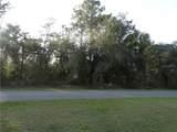 27037 Grand Oak Lane - Photo 9