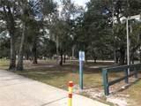 2233 Grand Tree Court - Photo 14