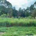 1307 Congo Drive - Photo 1