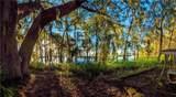 00 Shadow Oak Trail - Photo 1