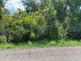 Osceola Drive - Photo 1