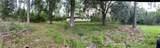 19625 Lake Pickett Road - Photo 9