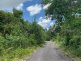 2410 Lake Tiny Road - Photo 2