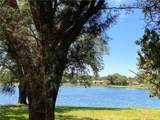 8408 Tangelo Tree Drive - Photo 32