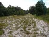 Pine Way - Photo 1