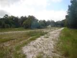 Pine Way - Photo 3