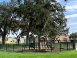 1566 Scarlet Oak Loop - Photo 18