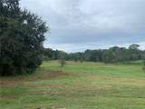 Lot 34 Grand Oak Lane - Photo 4