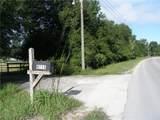 4115 Cypress Trails Drive - Photo 16