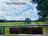 1080 Pell Road - Photo 6