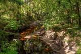 Branch Crossing - Photo 15