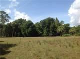 Branch Crossing - Photo 3