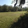 Branch Crossing - Photo 7