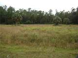 0 Osceola Polk Line Road - Photo 10