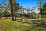 3015 Wolf Branch Road - Photo 5