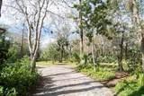 853 Mimosa Trail - Photo 6