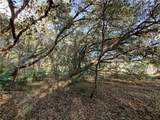 Arapaho Trail - Photo 12
