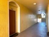 8710 Saratoga Inlet Drive - Photo 13