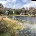 9869 Lake Georgia Drive - Photo 10