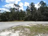 LOT 2 Larkspur Ave, Eustis Fl, 32736 - Photo 1