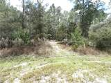 LOT 2 Larkspur Ave, Eustis Fl, 32736 - Photo 2