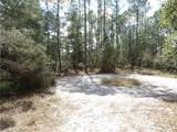 LOT 2 Larkspur Ave, Eustis Fl, 32736 - Photo 4