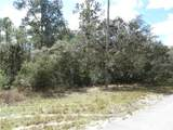 LOT 2 Larkspur Ave, Eustis Fl, 32736 - Photo 5