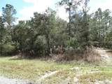 LOT 2 Larkspur Ave, Eustis Fl, 32736 - Photo 6