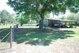2525 Ranchland Acres Road - Photo 12