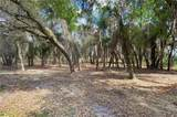 5.37 acres Lakeshore Drive - Photo 3
