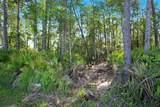 Riverwoods Trail - Photo 16