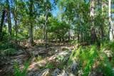 Riverwoods Trail - Photo 21